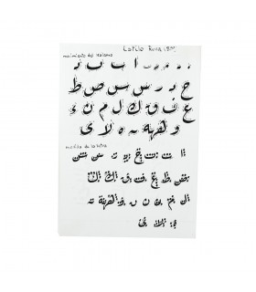 Kalam Arabic Script Pack 4 - Bamboo - 3 Sizes -3 Graduations