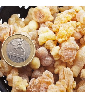 Стволы зерна ладана - ладан - от 25 гр.