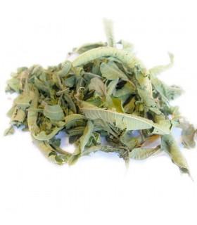 Toda a seco Lemon Verbena - Para o chá ou infusão moura