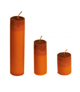 Kerzen-Wachs-Lady Bee - 7 cm Durchmesser - 3 Größen