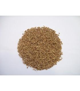 Anis - en-grain-haute qualité - 200 gr