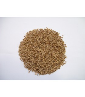 Anis - in-Korn-hohe Qualität - 200 gr