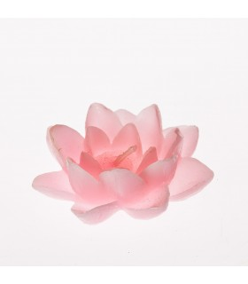 Vela - flor - Lotus flutuante