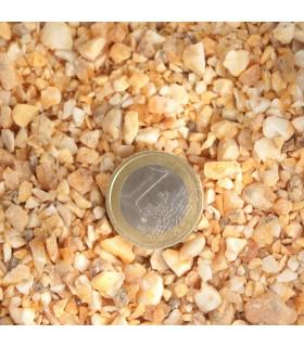 Encens benjoin haricots 25 gr