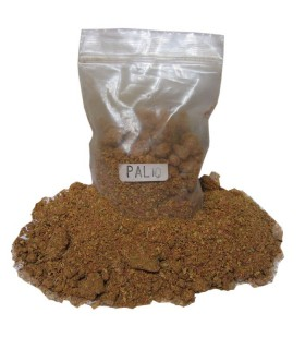 Palio d'encens en grain - 25 gr