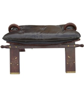 Chair of Camel (India)