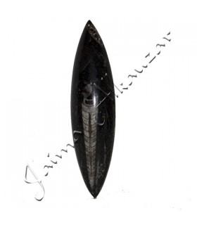 Полированный Ortosera - 14 х 4 см - пустыня Сахара