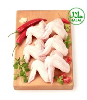 Alitas de Pollo - Halal - Bandeja 1,15 kg +/- Payan