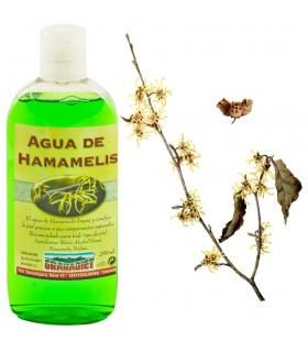 Water Witch Hazel - 250 ml
