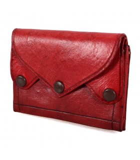 Portfolio skin leather - close Clip - 4 pockets