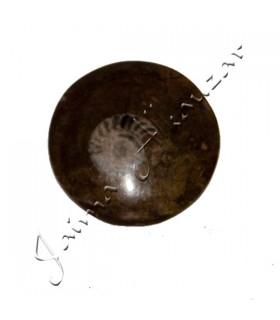 Amonite poliertem Fossil - 5 cm - Wüste der Sahara - Neuheit